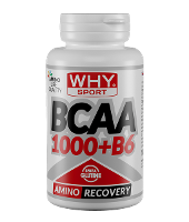 WHYSPORT BCAA SUP 4:1:1 100CPR