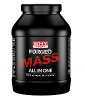 WHYSPORT FORGED MASS CACAO 1KG