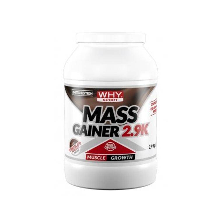 WHYSPORT MASS GAINER FOND2,9KG